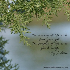 There is a purpose for your life | www.drnicolemeastman.com #loss #pain #purpose #quote