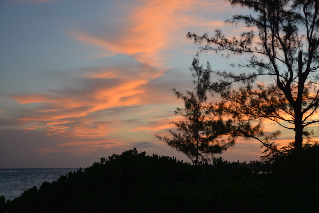 www.drnicolemeastman.com | A November Night In Cayman | blog | health | healing | marriage | mom